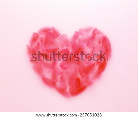 heart of flowers - stock photo