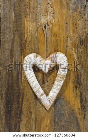 heart of love on wood and tree