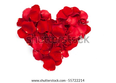 Heart of red petals of roses - stock photo