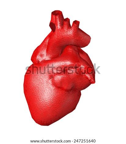 heart organ isolated - stock photo