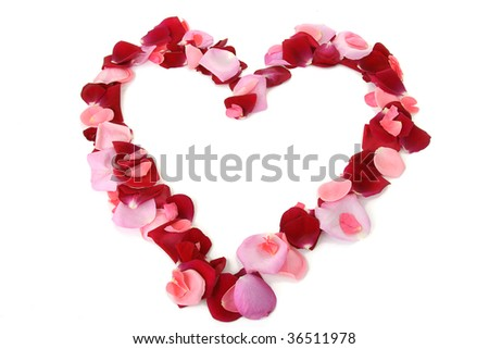 heart, rose petals isolated on white