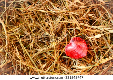 Heart shape candy on dried grass background with autumn filter.