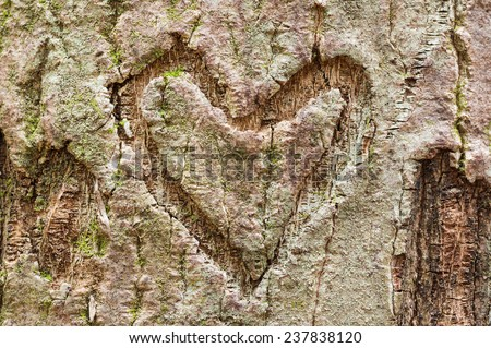 heart shape carved into tree bark with some moss and lichen - stock photo