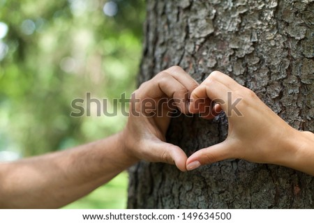 Heart shape. Close-up of human hands making heart shape in front of the tree