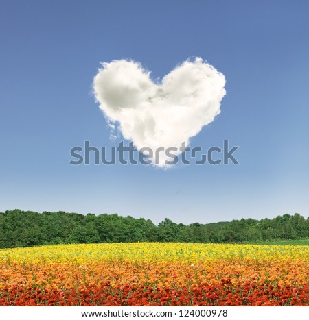Heart shape cloud over colorful flowers during the day - stock photo