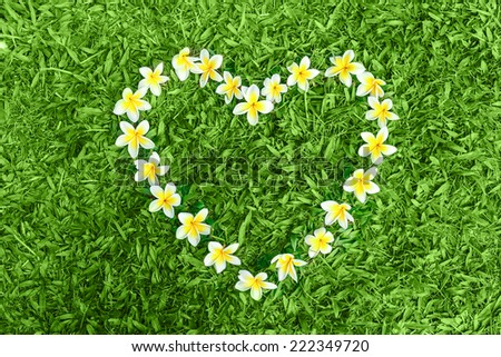 Heart shape made from flowers