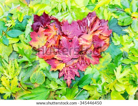 Heart shape made of red autumn leaves on green leaves - stock photo