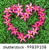 Heart shape made out of flower - stock photo