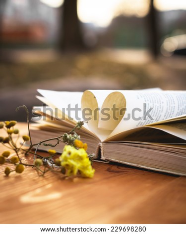 heart shape pages book and flower on wooden background - stock photo