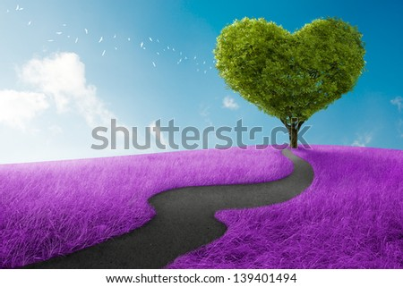 Heart shape tree in lavender meadow for love symbol - stock photo