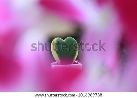 Shiny Leave Stock Images, Royalty-Free Images & Vectors   Shutterstock