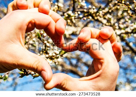 heart with hands on background of cherry blossoms
