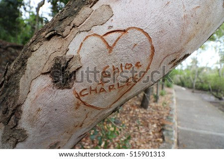 Heart with names Chloe and Charlee carved into tree