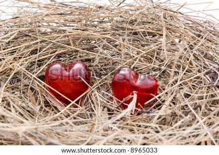 hearts on a nest