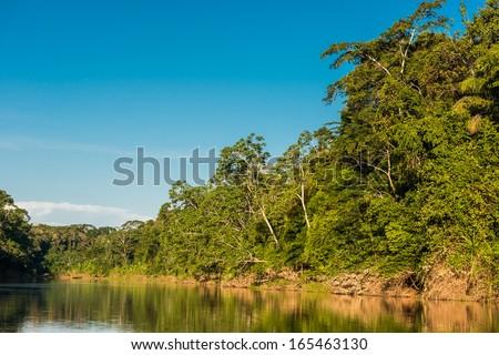 heath river in the peruvian Amazon jungle at Madre de Dios - stock photo