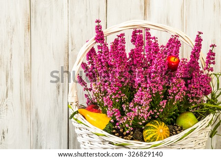Heather flowers in basket isolated on rustic wood background as autumn home decoration. - stock photo