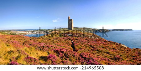 Heather in Bloom on Brada Head. Panorama of South of the Isle of Man with Milner Tower. Port Erin on the Right and Calf of Mann on the left. - stock photo