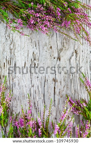 Heather on the old wood background - stock photo