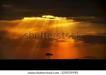 Heavenly rays, Masai Mara Kenya - stock photo