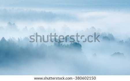 heavy fog in the forest view from above - stock photo