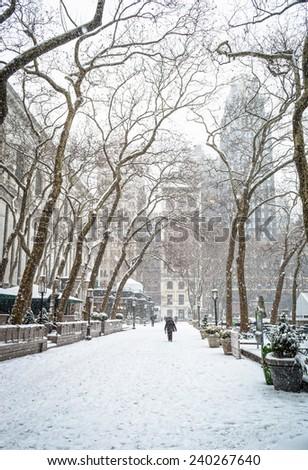 Heavy snowfall in Bryant Park in New York City. - stock photo
