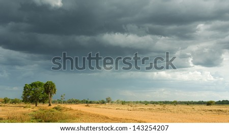Heavy Storm Clouds Over Dry Tropical Landscape