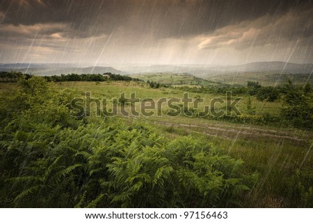 heavy summer rain over the meadow - stock photo