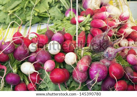 Heirloom and Easter Egg Colorful Radish Bunches at Farmers Market Fruits and Vegetables Stall - stock photo