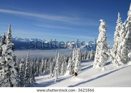 Heli-Skiing - stock photo