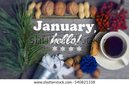 Hello January composition of different nuts, berries, fir branch