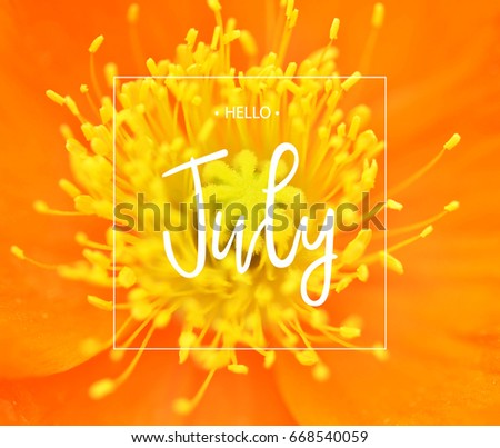 Hello July Greeting Card With Yellow Flower Poppy.