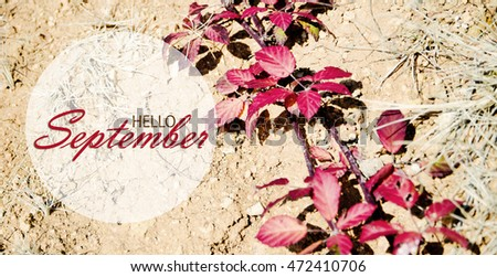 Delicieux Hello September Wallpaper, Autumn Background With Red And Orange Leaves