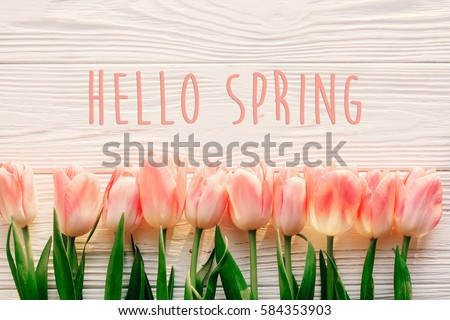 Hello Spring Text Sign Beautiful Pink Tulips On White Rustic Wooden Background Flat Lay