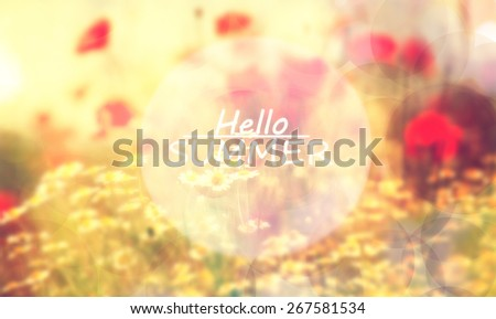 hello summer vintage soft focused and colored background with text added  - stock photo