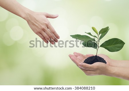 helping hands and hand with little growing plant on vivid bright greenery color tone backdrop:couple man hand preserve earth/globe/ecology:safe world life concept:healing global concept.abstract idea - stock photo
