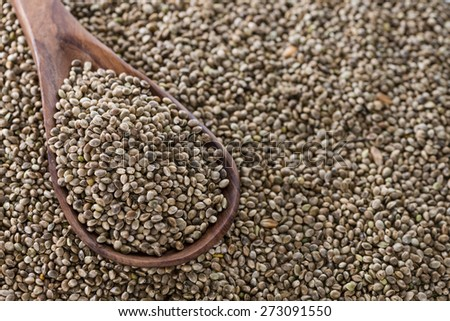 Hemp Seeds close-up picture for use as background image or as texture