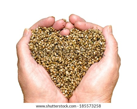Hemp seeds held by woman hands shaping a heart and isolated on white - stock photo