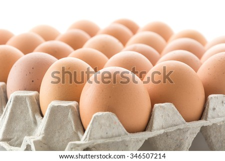 hen eggs with panel on whitebackground