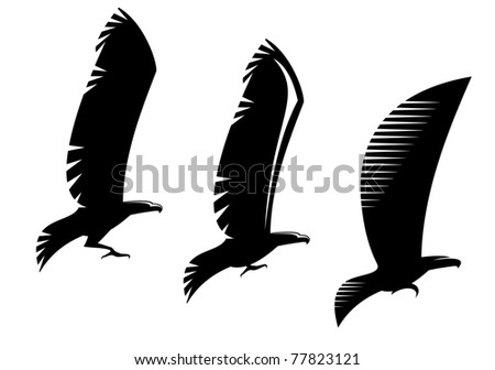 Heraldry eagle symbols and tattoo isolated on white, such a logo. Vector version also available in gallery - stock photo
