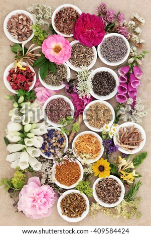 Herb and flower selection used in natural herbal medicine over hemp paper background. - stock photo