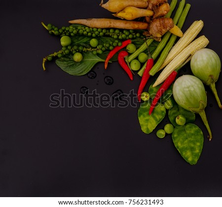 Herb spicy ingredients making thai food stock photo download now herb and spicy ingredients for making thai food on dark background recipes book thai forumfinder Choice Image