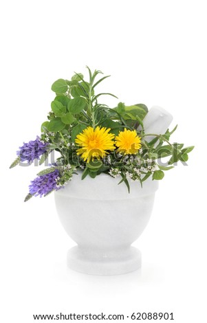 Herb and wildflower selection of lavender, thyme, rosemary, marjoram and dandelion flowers in a marble mortar with pestle, isolated over white background.