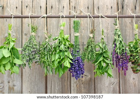 herb bundles hanging on a rod