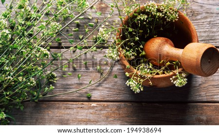 Herb capsella in mortar with pestle on wooden background, medicinal herb - stock photo