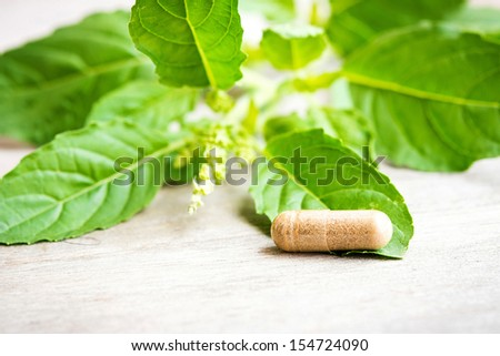 herb capsule with green herbal leaf