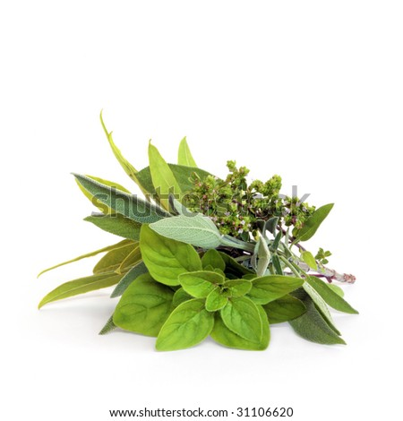 Herb leaf and flower selection of bay, oregano, sage and thyme, over white background. - stock photo