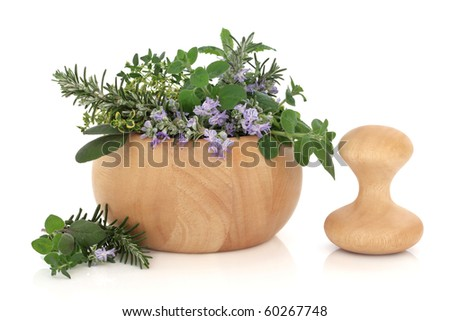 Herb leaf selection of golden thyme, oregano, purple sage, mint and  rosemary in flower in a beech wood mortar with pestle, isolated over white background.