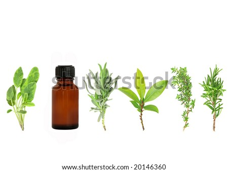 Herb leaf selection of lavender, bay, thyme, sage, and rosemary with an aromatherapy essential oil brown glass bottle, over white background. - stock photo