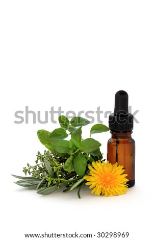Herb leaf sprigs of lavender, sage, thyme and oregano with a dandelion flower and aromatherapy essential oil dropper bottle, over white background. - stock photo