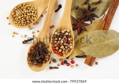 herb on wood spoon - stock photo